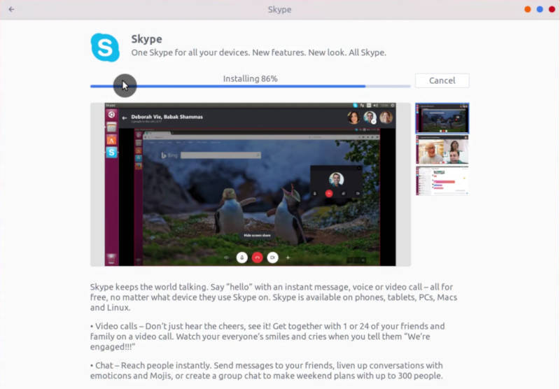 Installing Skype from Software Center