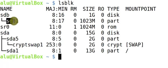 Running lsblk command to show all partition on your hard drive