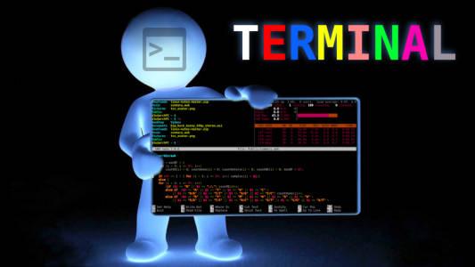 My Linux terminal color scheme | Average Linux User